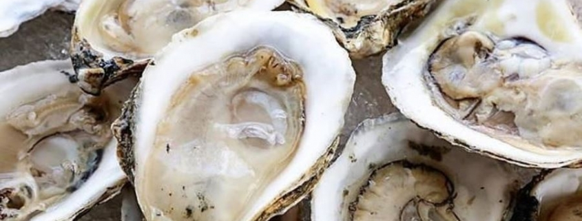 Mastering Oyster Etiquette